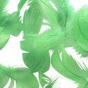 コキール(ミントグリーン) この羽根はディスプレイ アクセサリー ヘットドレス等に使用されてます。