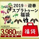 福袋2019 スプラトゥーン福袋 竹(7点入り)当店通常価格...