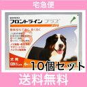 ◎【宅急便・送料無料】犬用 フロントラインプラス XL(40〜60kg未満)6本入 [10個セット]