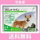 ◎【宅急便・送料無料】犬用 フロントラインプラス M(10〜20kg未満)6本入 [10個セット]