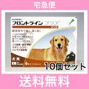 ◎【宅急便・送料無料】 犬用 フロントラインプラス L(20〜40kg未満) 6本入 [10個セット]