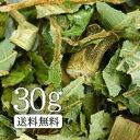 【送料無料】卸値価格!「タラ茶」15g 春の山菜界の王様!【ダイエットティー】【健康茶/お茶】タラ茶/たら茶