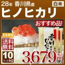 h28香川 ひのひかり 米 10kg 送料無料(お米 10k...