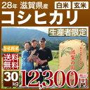 滋賀県 コシヒカリ 30kg 送料無料(28年産 米/明日楽) 玄米のお米/精米(白米) 対応可 井口農園が作る産地指定/西日本産の近江米、ミネラルがたっぷり、滋賀県産 こしひかり (あす楽 対応 通販)
