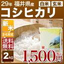 新米 28年 福井県産 コシヒカリ 2kg あす楽 送料無料 白米/玄米 対応可 例年、特A米も産出