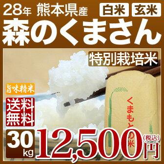 27年 熊本 森のくまさん 30kg あす楽 送料無料 白米/玄米 小分け対応可 安心の西日本産、九州の米 森の熊さん(熊本米 もりのくまさん)(27年度/米/お米/通販)