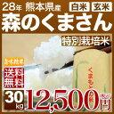27年 熊本 森のくまさん 30kg あす楽 送料無料 白米/玄米 小分け対応可 安心の西日本産、九州の米 森の熊さん(熊本米 もりのくまさん)(27年度/米/...