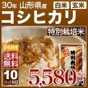 山形 こしひかり 特別栽培米 10kg(5kg×2)送料無料 29年産の(玄米)又は(白米) 内祝いやお返し、ギフトに熨斗(のし)名入れ 可