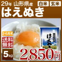 山形県産 はえぬき 米 5kg 送料無料 29年産の(玄米)...