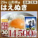 山形県産 はえぬき 米 30kg(5kg×6)送料無料 29...