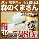 熊本 森のくまさん 特別栽培米 10kg(5kg×2)送料無...