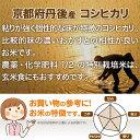【ブランド京野菜】 京都府産 やまのいも(2個入り、約900g)
