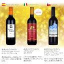 赤ワイン10本セット デイリーワイン テーブルワイン スペイン チリ 送料無料