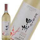 白ワイン ビンテージ甲州 日本 山梨 中口 日本ワイン 大和葡萄酒