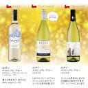 白ワインセット 白ワインセット10本 チリ イタリア 10本 送料無料