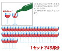 ワインセット 送料無料 パーティ 6本 飲み比べ オーガニック 大人数 赤ワイン お歳暮