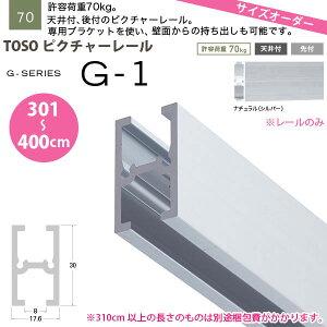 TOSOピクチャーレールG-1レールのみ301〜400cmオーダーサイズ1本