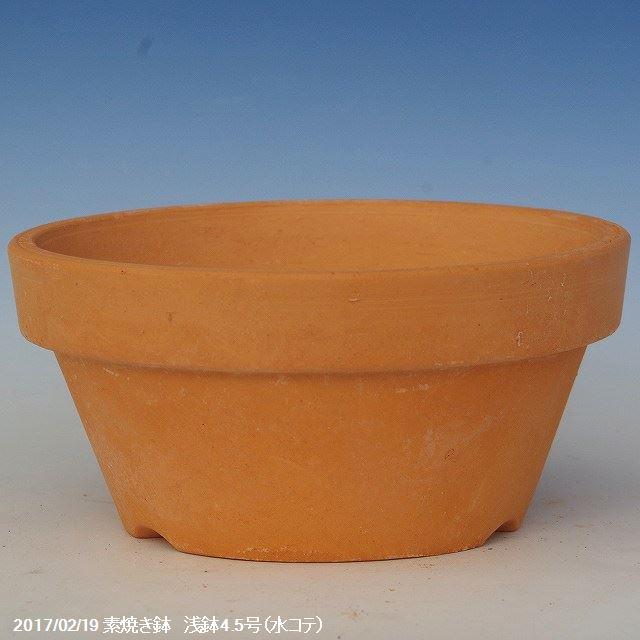 乾きの早い素焼き鉢 浅鉢 4.5号 旧トモエ製 (再生鉢)【水コテ(機械ロクロ)/手づくり/洋ラン/多肉植物】【植木鉢】