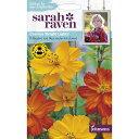 Johnsons SeedsSarah Raven Brilliant for Bees & Butterflies Cosmos Bright Lightsサラ・レイブン・ビー&バタフライ コスモス・ブライト・ライツジョンソンズシード