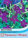 【輸入種子】Thompson & Morgan NICOTIANA Perfume Deep Purple F1 ニコチアナ パフューム・ディープ・パープル トンプソン&モーガン