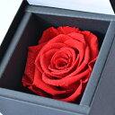 花 プレゼント DIAMOND ROSE ダイヤモンド ローズ 赤い バラ プリザーブドフラワー (お磨きクロス付ギフトセット) 彼女 誕生日 プレゼント ジュエリー アクセサリー