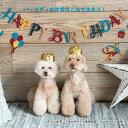 ライフライク【life-like】ハッピークラウンMサイズ 猫 犬 誕生日 記念日 アニバーサリー HappyBirthday ギフト プレゼント 帽子 ハット