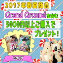 ��2017SS������Grand Ground�ʥ��饰���(0001)��grand ground ͽ�� ���饰�� ͽ�� �Ҷ��� ������ 2017 �ղơۡ�17SS��