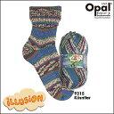 Opal 靴下用毛糸 Illusion 9315