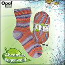 Opal 靴下用毛糸 Abenteuer Regenwald 9453