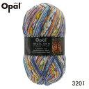Opal 靴下用毛糸 Hundertwasser 3201
