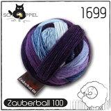 SCHOPPEL 毛糸 ZAUBERBALL100 1699