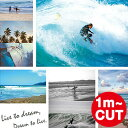 Surfphoto-main01