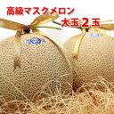 静岡県産 厳選 アローマメロン 大玉 2玉 2個 果物 贈答 ギフト プレゼント 箱入り