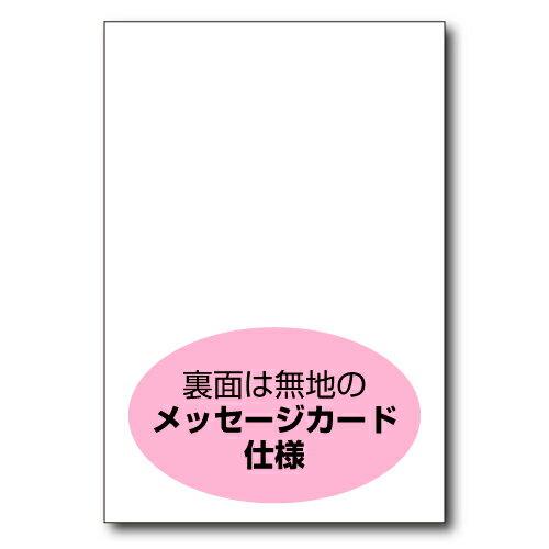 【DMC-002】 10枚パック はがきサイズ...の紹介画像2