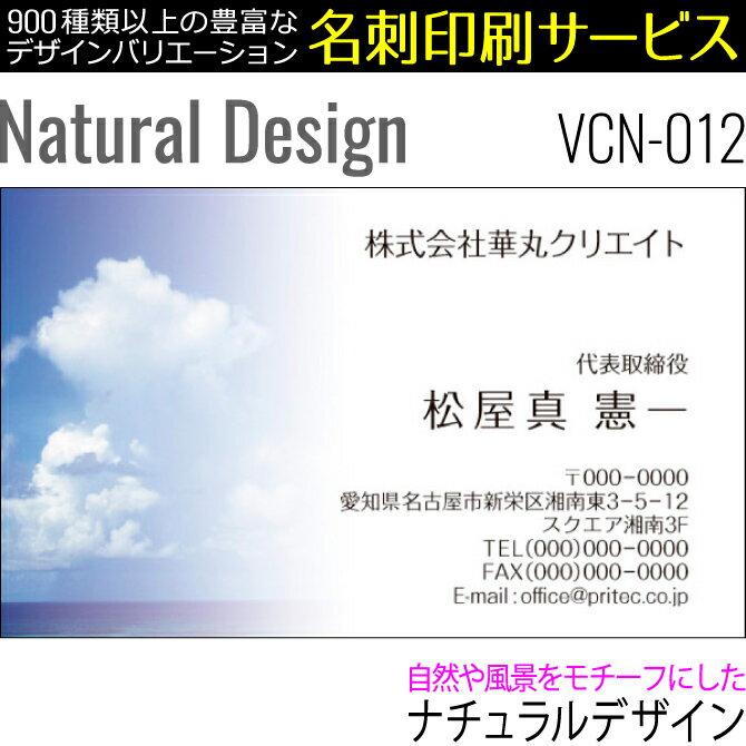 【名刺印刷】お洒落な名刺作成 デザイン名刺 ビジネス名刺 ナチュラルデザイン[VCN-012]《100枚入》【ネコポス送料無料】