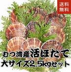 青森県むつ湾産活ほたて 大サイズ 2.5kg (10枚~12枚)