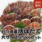 青森県むつ湾産活ほたて 大サイズ 5.5kg (22枚~27枚)