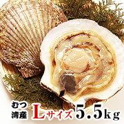 青森県むつ湾産活ほたて Lサイズ 5.5kg (22枚~27枚)「活ほたて、ホタテ、帆立、ほたて」