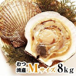 青森県むつ湾産活ほたて 中サイズ 8kg (40枚~48枚)