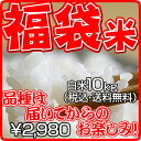 【福袋】 白米 10kg【平成21年・滋賀県産】 【smtb-k】