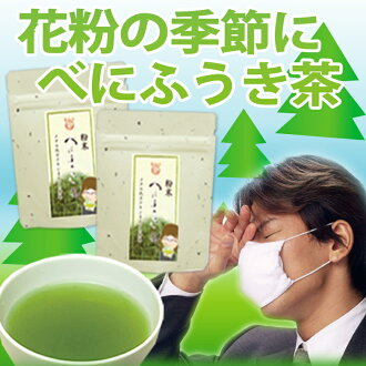 Powder my ふうき tea Kagoshima Island tea 40 g 2 books in 1000 yen further 3 set order basis up to 63% off Kagoshima Island tea 100% fs3gm