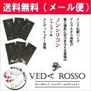 ヴェーダロッソ スカルプチュアシャンプー・コンディショナー 3日間トライアルセット 【VEDA ROSSO】