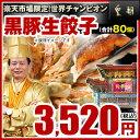 【餃子-20個入×4箱】★販売個数2800万個突破★パリパリ感が他とは違う!黒豚生餃子