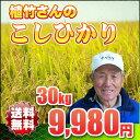 コシヒカリ 30kg 一等米【送料無料】平成25年産 埼玉県 植竹さんの お米 こしひかり 玄米対応 精米無料※玄米ご希望の場合は、必ずプルダウンより選択して下さい↓