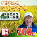 【送料無料?メール便】 23年埼玉幸手産植竹さんのこしひかり 精白米 1kg