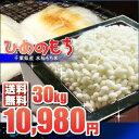 もち米 30kg 送料無料 新米 千葉県産 28年産 ひめのもち 玄米 精米無料(白米27kg)