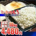 もち米 10kg 白米 (5kg×2袋) 千葉県産 新米 ひめのもち 28年産