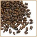 【焙煎】ハブ茶(はぶ茶 決明子 ケツメイシ)500g お茶 健康茶 ハーブティー