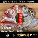 長崎県産 一夜干し大漁お得セット/干物【送料無料】【のし対応】ギフトにもどうぞ。レンコダイ・イトヨリ・ヒラアジ・スルメイカ
