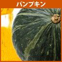 パンプキンパウダー 30g 【HappyPrice100YE...
